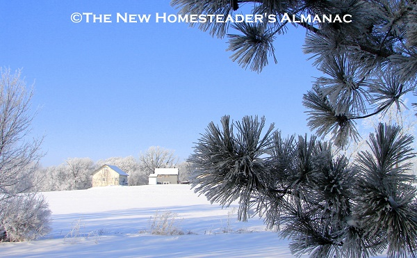 January Homesteading Chores - The New Homesteader's Almanac