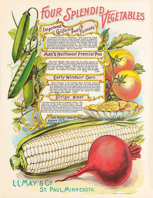Seed Catalogs: Selling Garden Dreams - The New Homesteader's Almanac