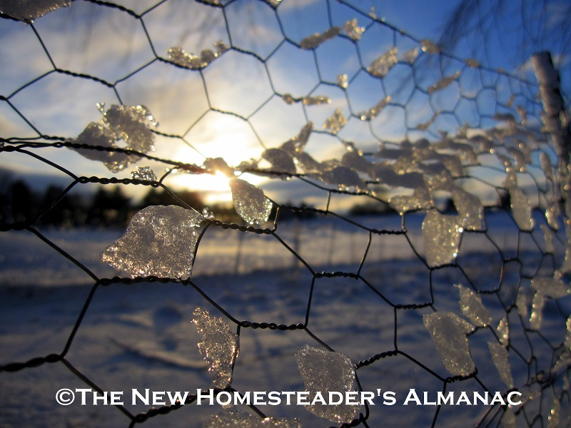 March Homesteading Chores by USDA Zone - The New Homesteader's Almanac