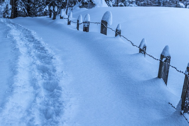 Fence in snow - The New Homesteader's Almanac
