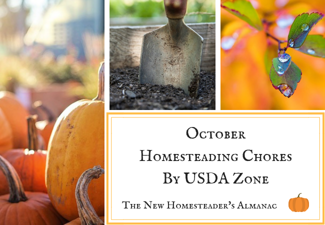 October Homesteading Chores By USDA Zone
