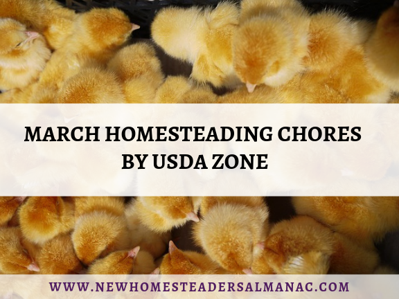 March Homesteading Chores By USDA Zone