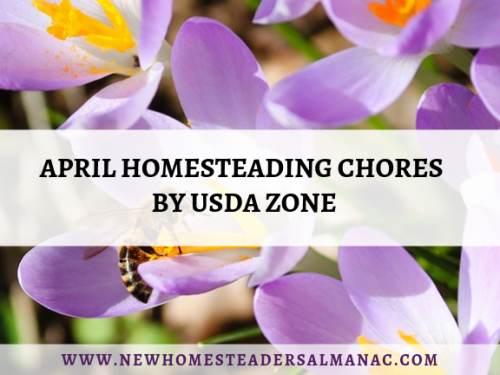 April Homesteading Chores By USDA Zone
