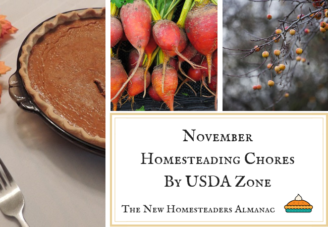 November Homesteading Chores by USDA Zone