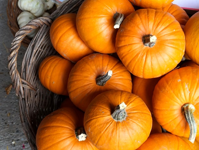 How to Freeze Pumpkins and Winter Squash