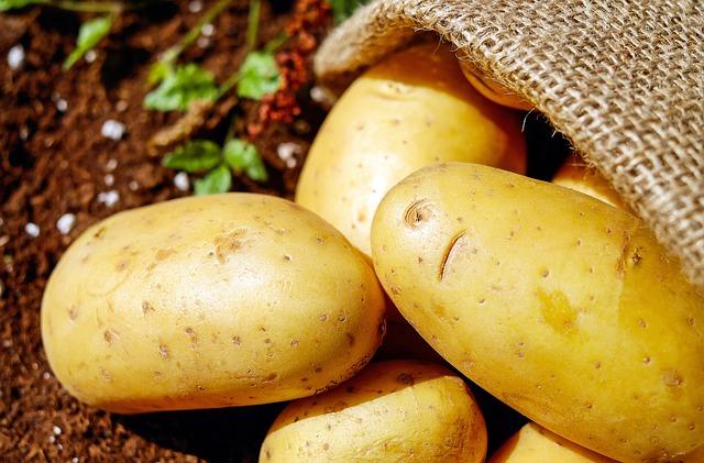 plant what you like...I like potatoes!