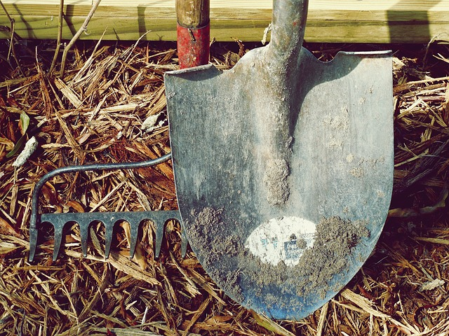 Maintain your garden tools.