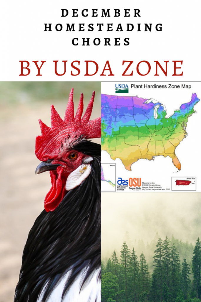 December Homesteading Chores by USDA Zone - list of homesteading chores to take care of in December including gardening and farm chores.