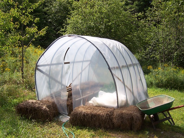 straw bales around the base of a makeshift greenhouse