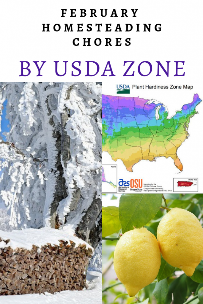February Homesteading Chores by USDA Zone - The New Homesteader's Almanac