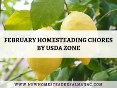 February Homesteading Chores by USDA Zone