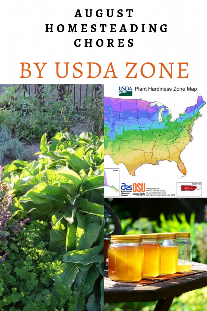 August Homesteading Chores by USDA Zone - The New Homesteader's Almanac