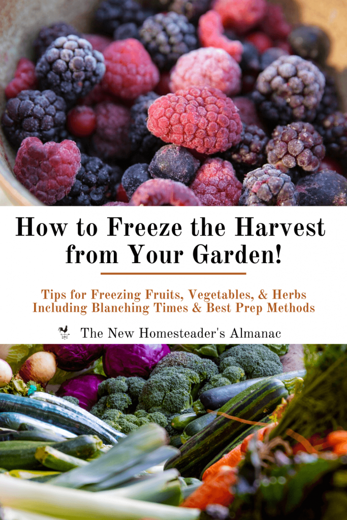 How to Freeze the Harvest from Your Garden - The New Homesteader's Almanac